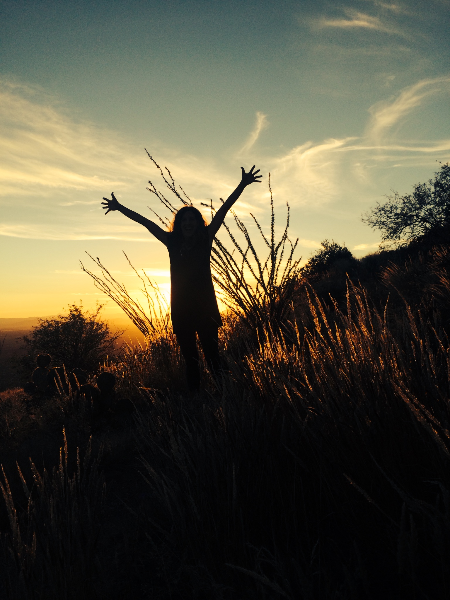 Tucson Arizona | StewartStrawbridge com